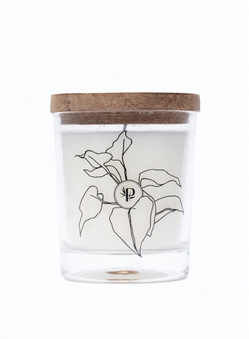 SCENTED CANDLE - Home - Vêtements Bio - Palem Brand